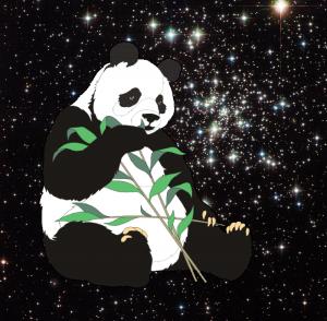 Panda-Mensional