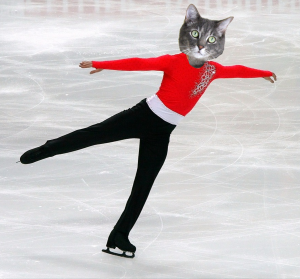 Figure Skating Cat
